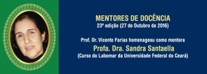 Profa. Dra. Sandra Santaella (moldura)